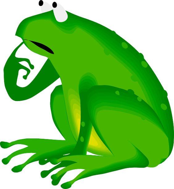 frosch verwirrt to 564