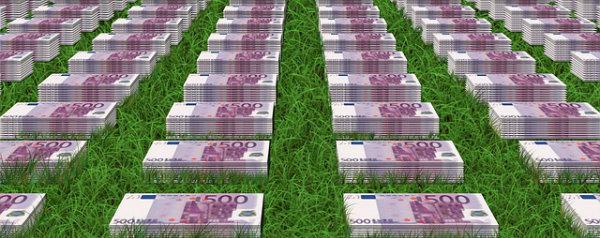 Wiese mit 500 Euro Scheinen