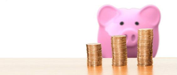 sparen schwein muenzen l 564