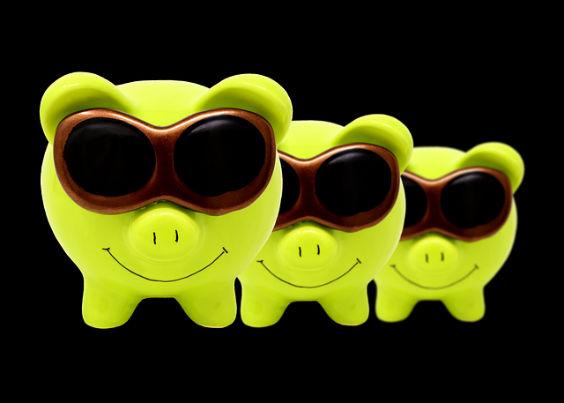 sparschweine sonnenbrille 5 564