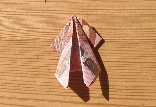 geld falten frosch 20