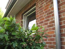 Pfandbriefe sind meist mit Immobilien oder Grundstücken besichert